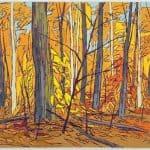 FOREST INTERIOR – ALGONQUIN PARK
